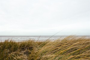 Hobe Sound Ocean
